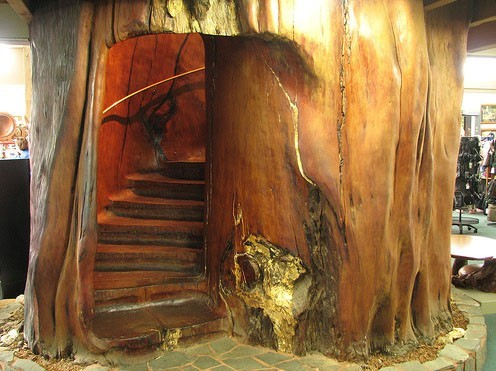 Необычные лестницы - лестница в бревне